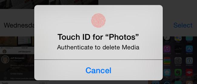 Photego Touch ID Tweak