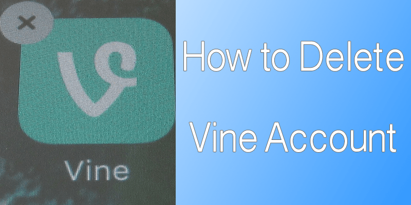 How to Delete Vine Account