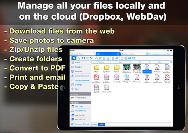best ipad file manager