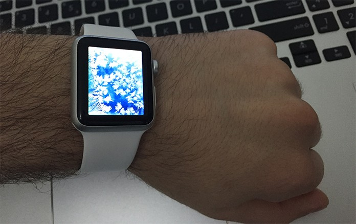 frozen apple watch