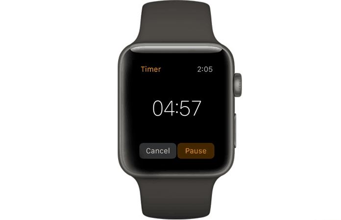 pause timer on apple watch