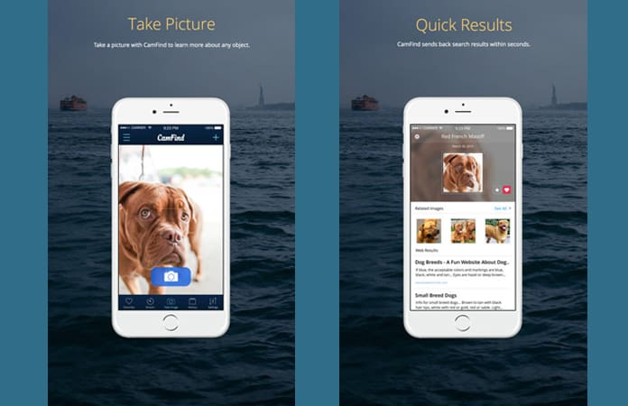 best reverse image search app