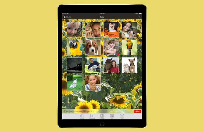 ipad photo frame app