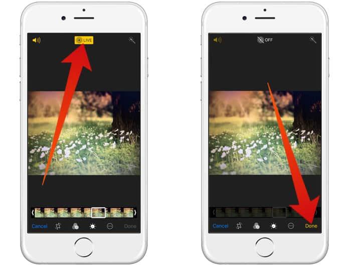 convert live photo to still photo
