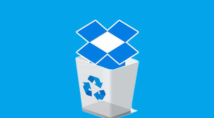 Guide to Clear Dropbox Cache on iPhone and Android