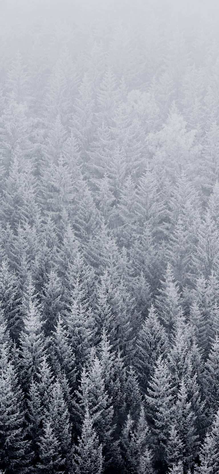 iphone 6s original wallpapers