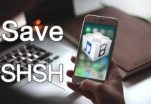 save shsh2 blobs online