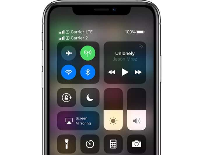 use dual sim on iphone xs max